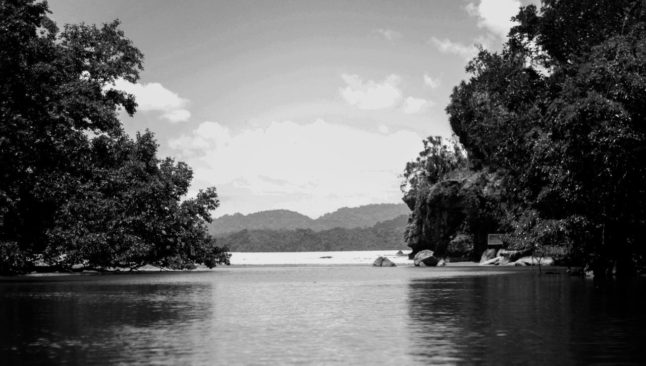Tree Water Nature Reflection Mountain Scenics Tranquility Sky Lake Beauty In Nature No People Outdoors Tranquil Scene Cloud - Sky Day Travel Blackandwhite Eyeem Philippines Philippines Travel Destinations Zen-like Beauty In Nature Landscape Nature