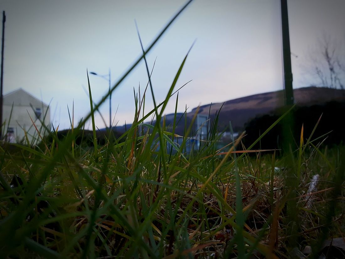 Hanging Out Taking Photos Hello World Mountainash Amateurphotography Appreciate The Scenery