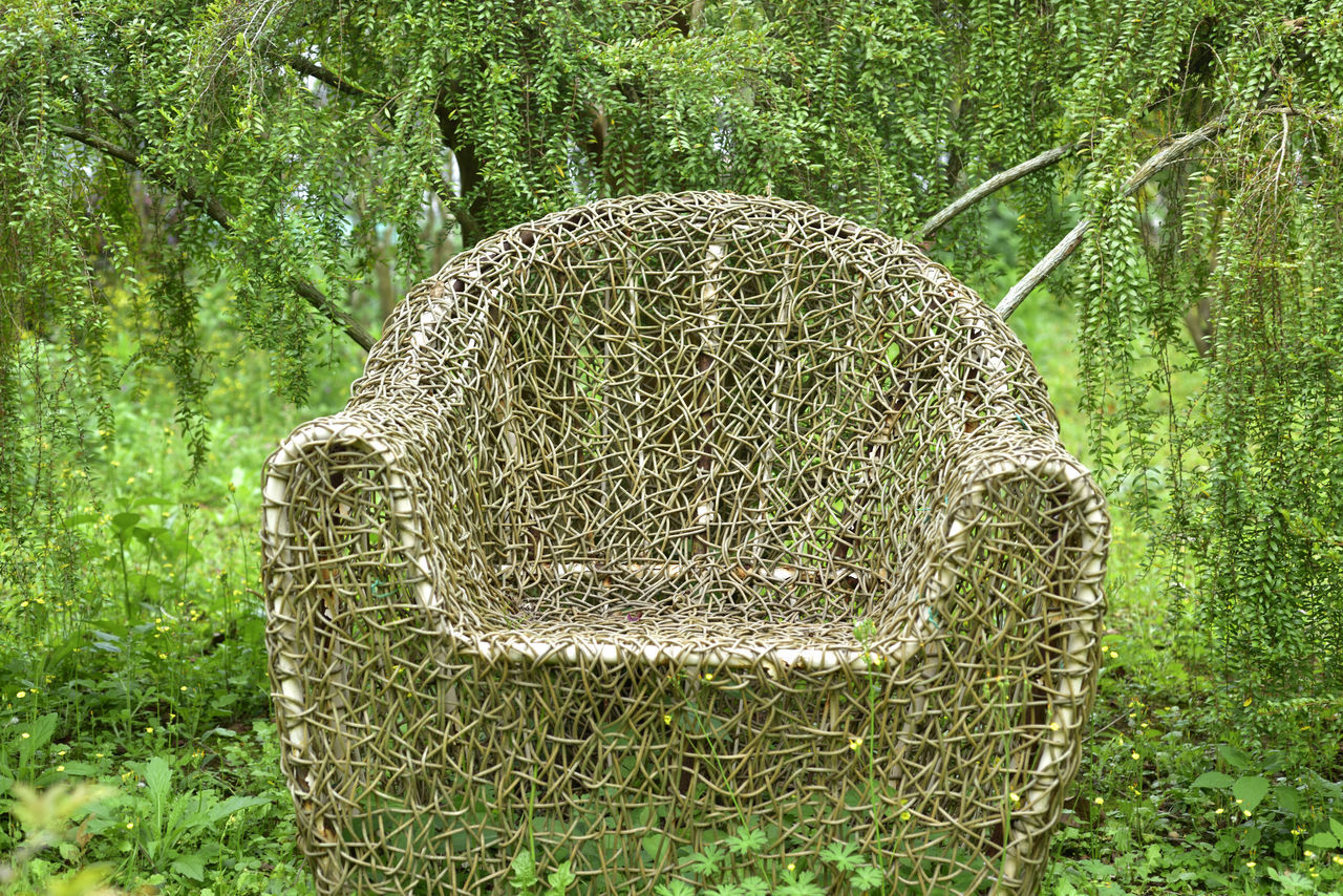 Beautiful Beauty In Nature Chair Close-up Day Garden Grass Grassland Green Color Growth Leisure Nature No People Outdoors Patio Plant Tranquility Tree Tree