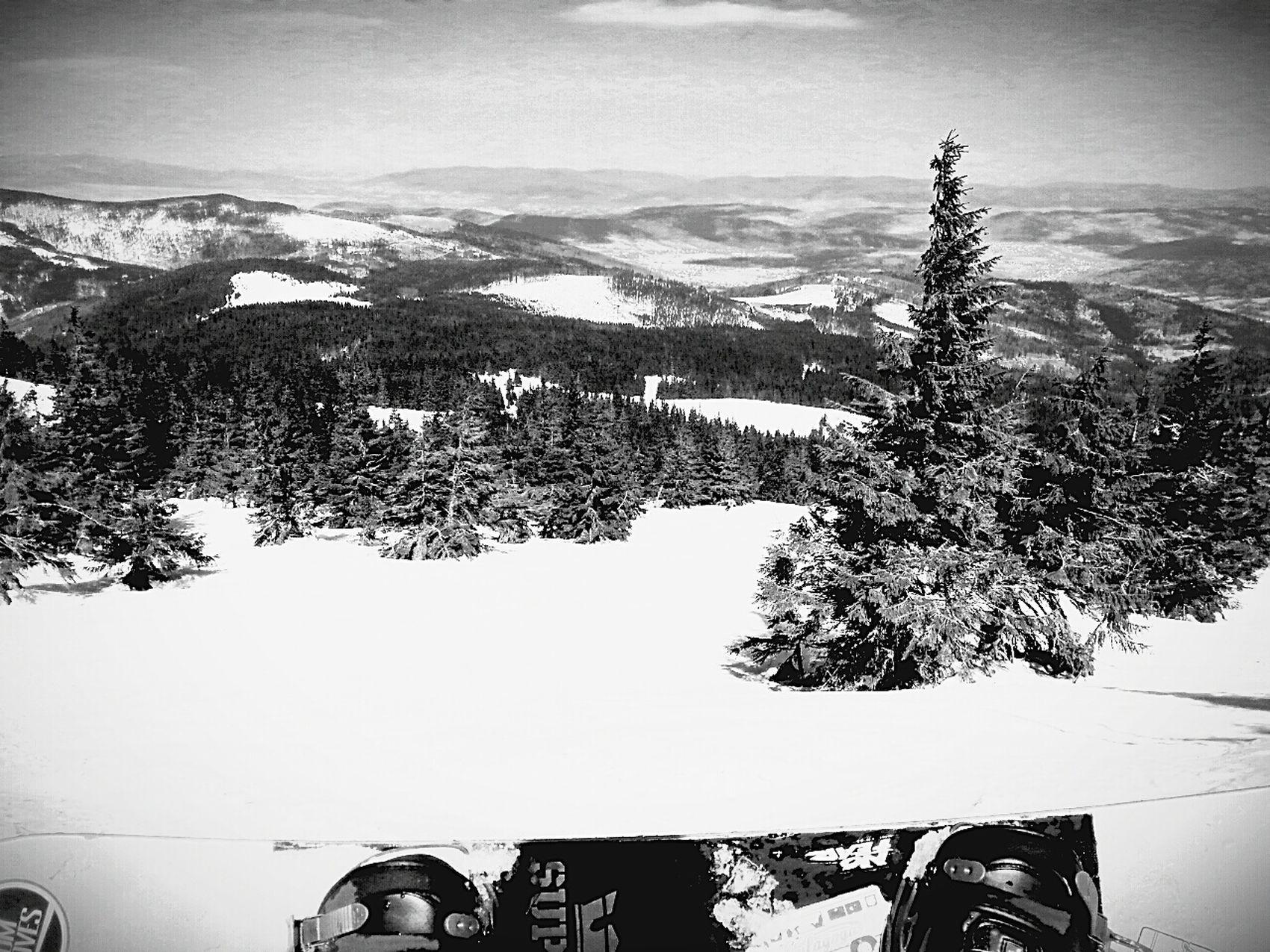 Poland Pilsko Snowboarding Snowboard Theendofseason Forest View Enjoying The View