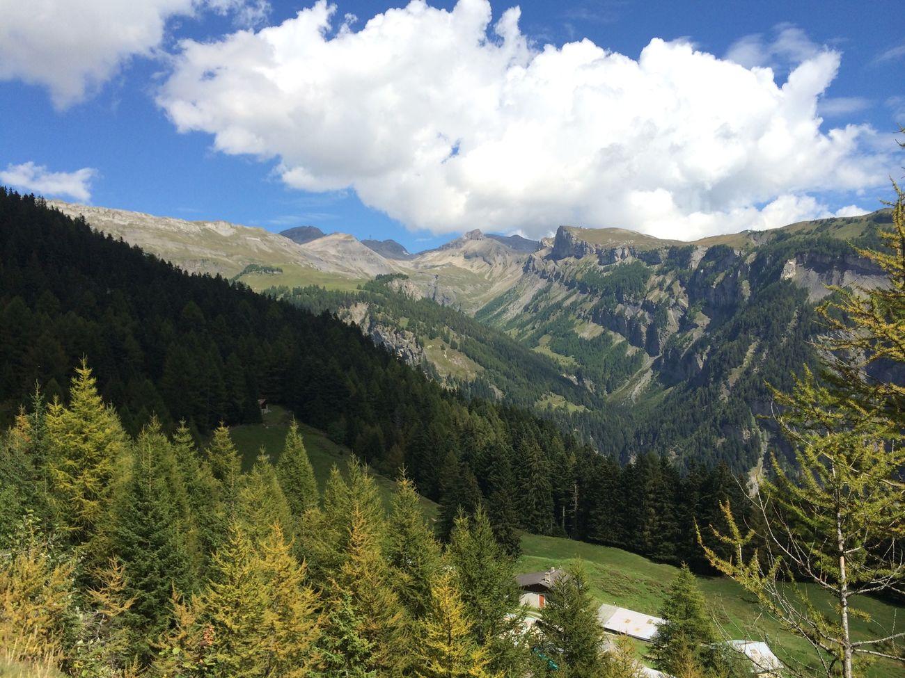 Enjoying Life Mountain Mountain View