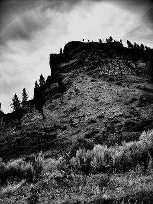 black and white at Idaho by Stacy Ericson