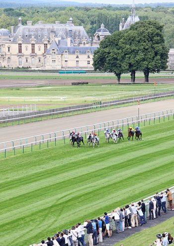Feel The Journey Prix De Diane Longines Chantilly France Horses Horse Racing A Bird's Eye View The Photojournalist - 2017 EyeEm Awards The Architect - 2017 EyeEm Awards