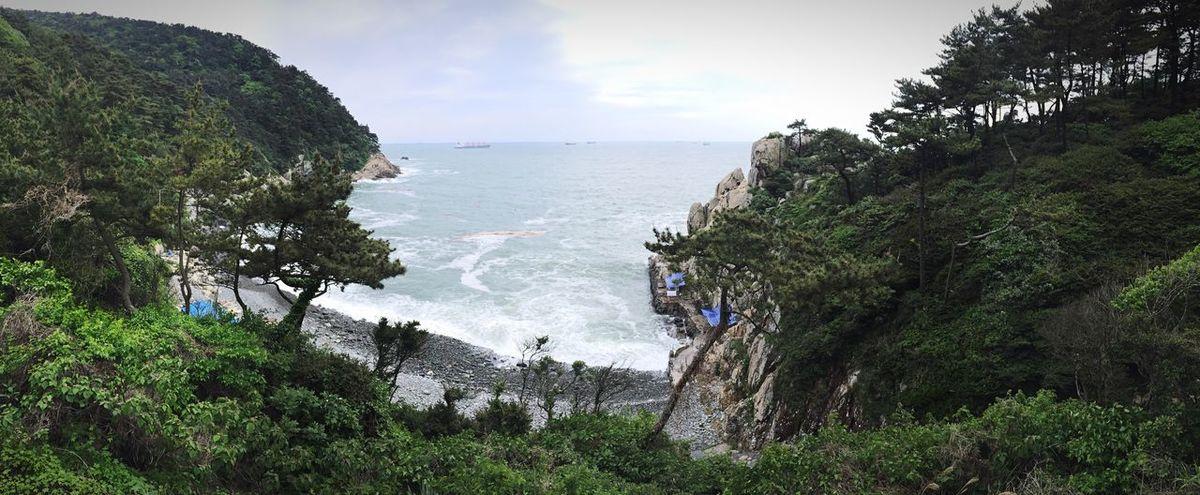 수학여행! Sea Beach Panorama IPhone IPhon6 IPhoneography