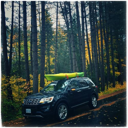 Explorer Maple Car Ford Autumn Fall Colors