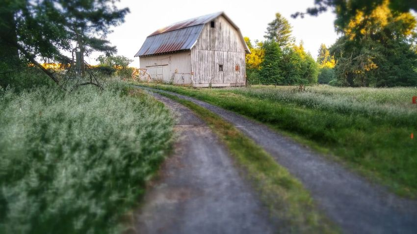 The Great Outdoors With Adobe Farmland Home