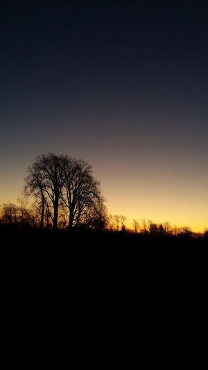 Good night y'all! Fall Collection Sunset Thankful For Another Day Silhouette Clear Sky God Is Always Good
