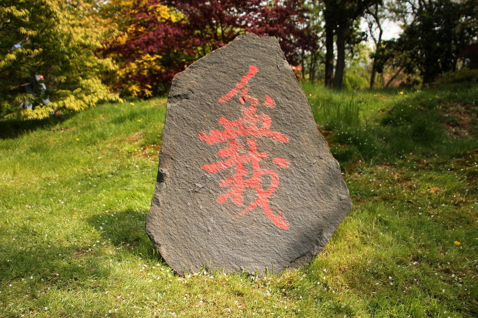 China Garden Close-up Day Grass Grief Nature No People Outdoors Text