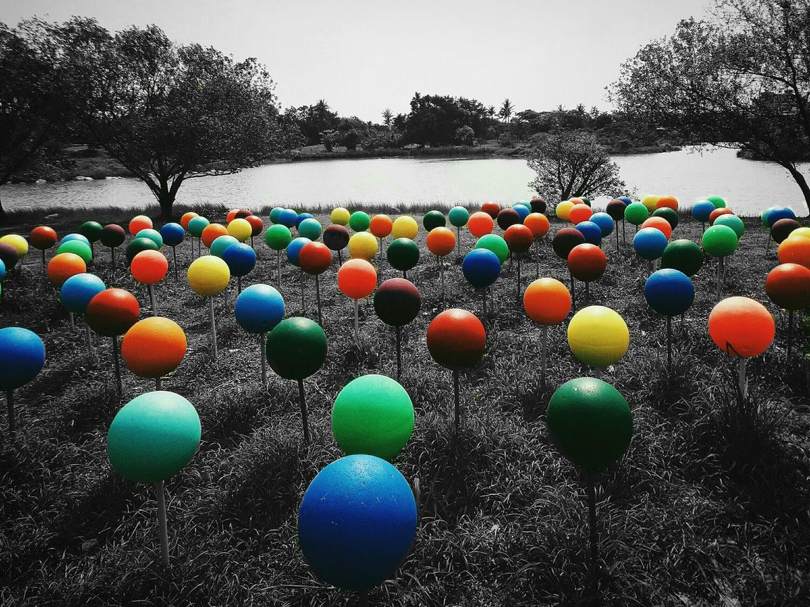 Multi Colored Outdoors No People Installation Art Installationart Variation Bubbles Taiwan 衛武營都會公園 Break The Mold