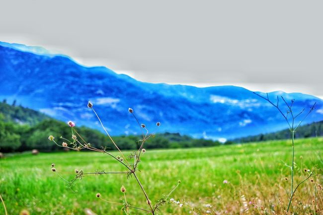 Showcase August Italy Popoli Colour Of Life Color Palette Nature Colours Of Life Colors Of Life Mountains And Sky Mountains Abruzzo - Italy Colour Palette Colours Of Summer Summer Go Away Nikon Landscape Landscape_photography