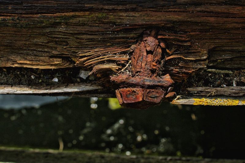 Rust Erosion Old Wood Rotten Wood Rusty Nuts And Bolts Portside Harborside Old Deterioration Decay Eroded Abstract