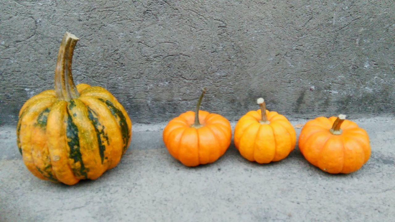 Pumpkins Halloween Halloween Pumpkins Orange Color Big Pumpkins Decoration Objects Shapes In Nature  Round Halloween2015