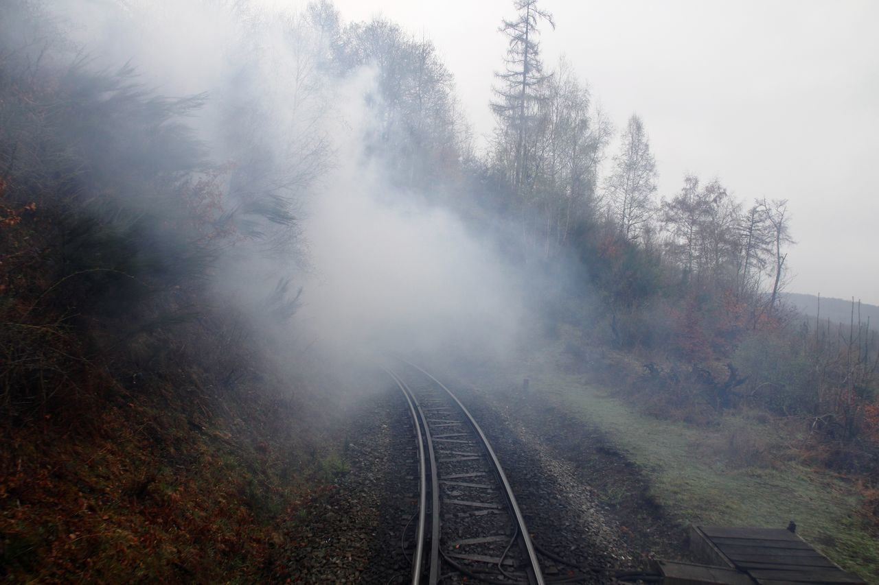 going OUT of the back... Beauty In Nature Brocken Brockenbahn Day Fog Harz Look Back Narrow-gauge Railway Nature No People Outdoors Pollution Of The Environment Railroad Track Railway Railway Track Railway Tunnel Sky Steam Steam Train Transportation Transportation Tree Tunnel