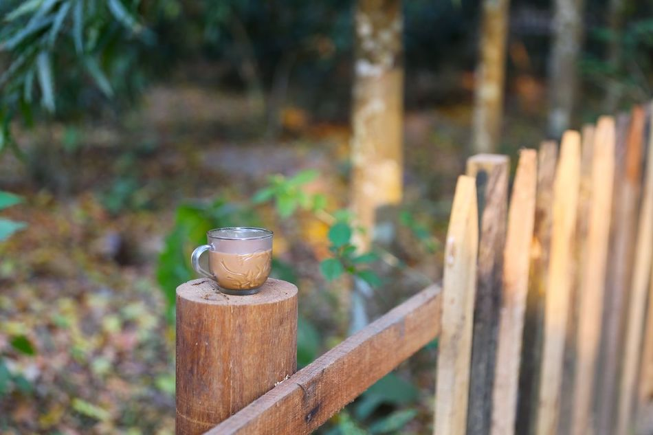 A cup of tea makes everything better Bangladesh 🇧🇩 Beauty In Nature Chittagong Close-up Day Focus On Foreground Growth Landscape Moment Mood Nature Nature No People Nut - Fastener Outdoors Tea Tea Cup Travel Photography Traveling Wood - Material