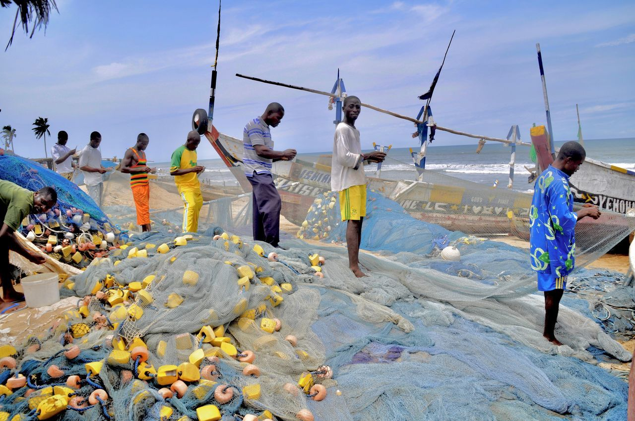 Africa Beach Developing Country Fischernetz Fisherman Fishing Fishing Area Fishing Boat Fishing Net Fishing Quota Fishing Village Ghana Large Group Of People Men Net Outdoors People Pirogue Poverty Wooden Boat Repairing Fishing Nets Repairing Team Teamwork