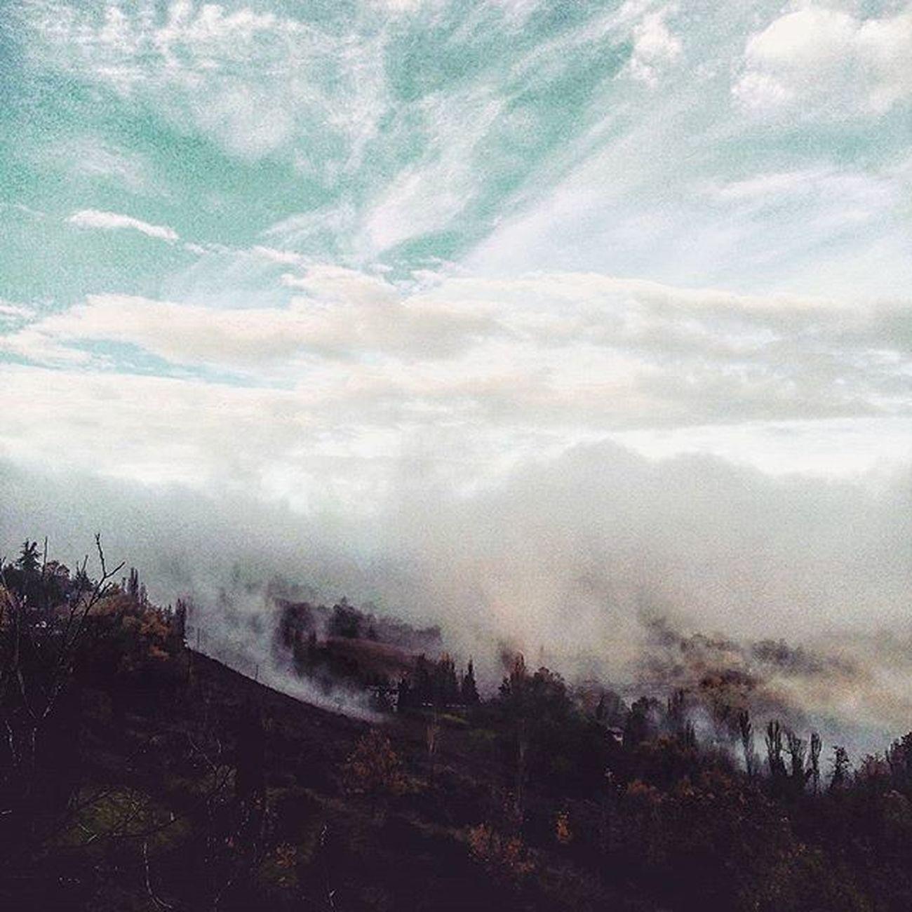 Nuvole in atterraggio d'emergenza (?) Urbino Montefeltro Marche Marcheforyou Italy Italia SkyClouds Clouds Cloudscape Igersitalia Igersmarche Nature Naturelovers Nuvole Nebbia Fog Foggy Lategram Liveloveitalia Liveloveitaly