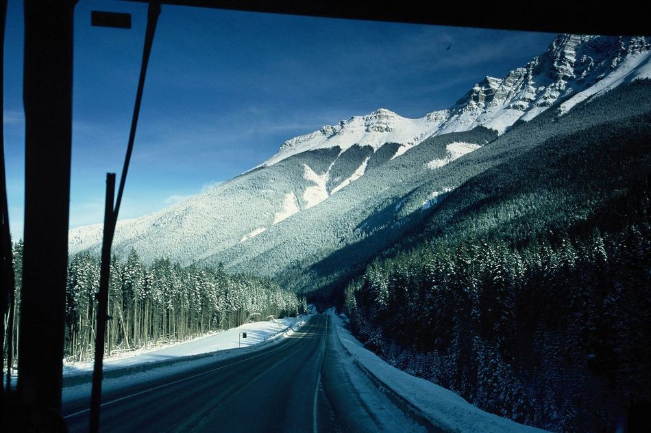 """Roadtrip Mountain Snow Transportation Cold Temperature Tree Winter Awayfromhome Road Nature Beauty In Nature Mountain Range Sky Landscape Non-urban Scene Day Tranquility EyeEm Nature Lover Filmisnotdead Leicam6 Colorslide Tranquil Scene No People Outdoors """" Catch the Bunny """" U'll know when u see it"""
