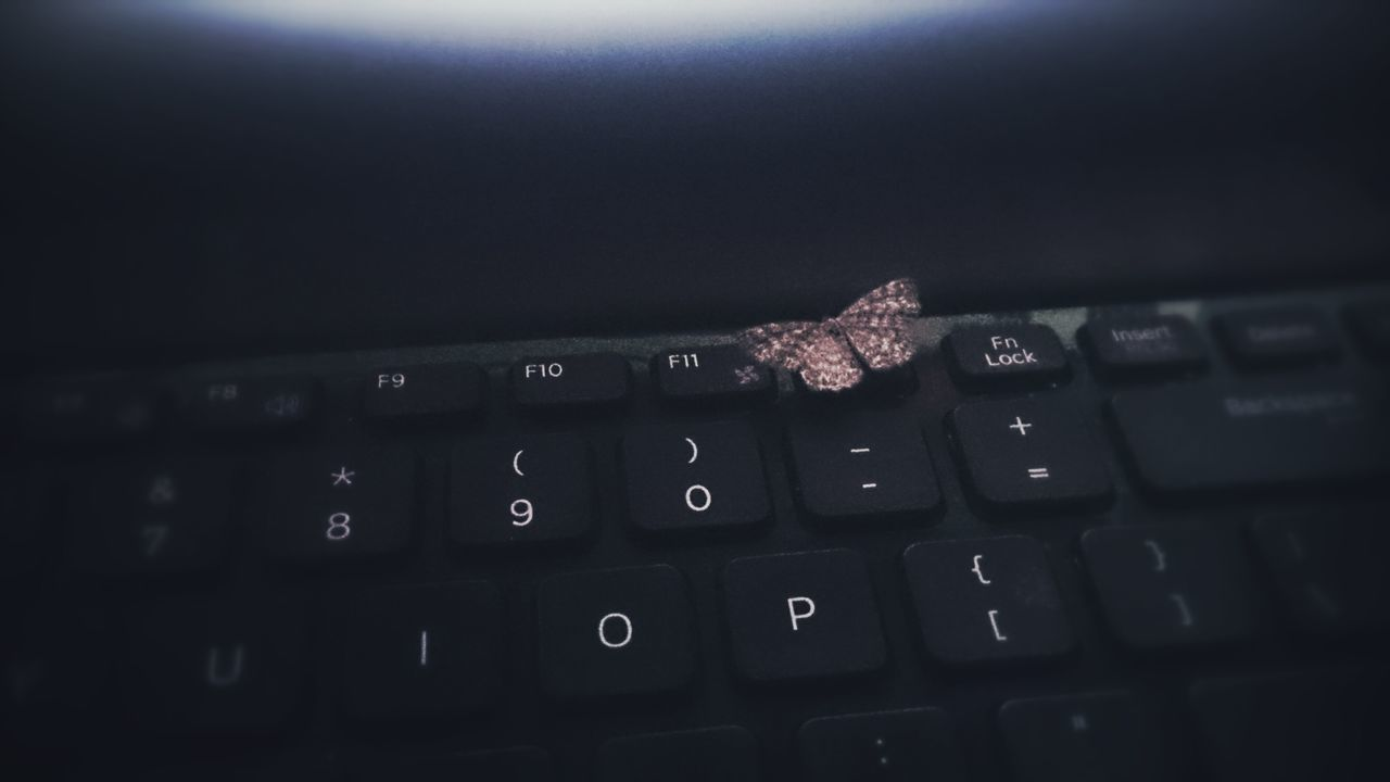 Beautiful stock photos of keyboard, Black, Black Background, Butterfly, Close-Up