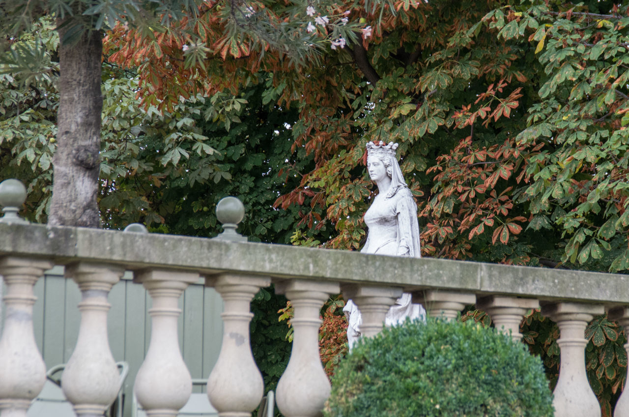 Balustrade Day Formal Garden France French Green Color Growth Jardin Du Luxembourg Marble Nature No People Outdoors Paris Plant Queen Sculpture Statue Stone Material Tranquility Tree