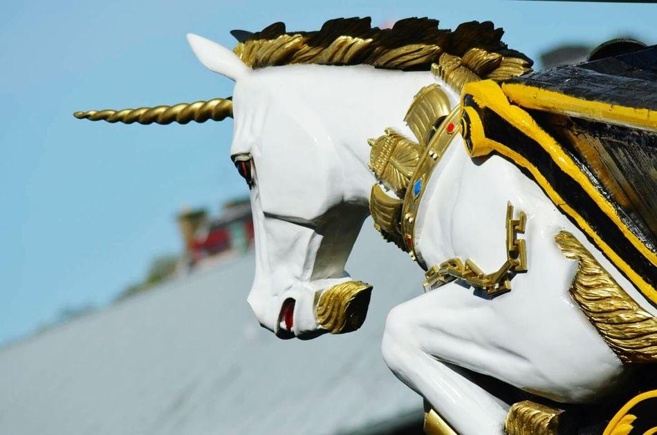 Beautiful stock photos of unicorn, Animal Representation, Art, Art And Craft, Close-Up