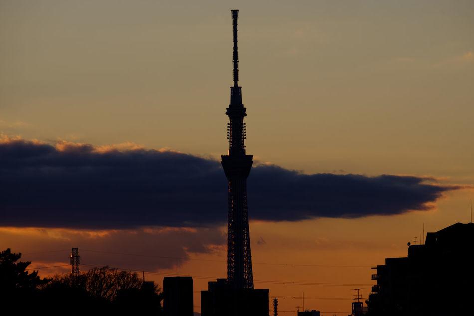 TOKYO SKYTREE Evening Evening Sky Fujifilm FUJIFILM X-T2 Fujifilm_xseries Japan Japan Photography Night Outdoors Sky Skytree Sunset X-t2 スカイツリー 太陽 日暮れ 日没 東京スカイツリー