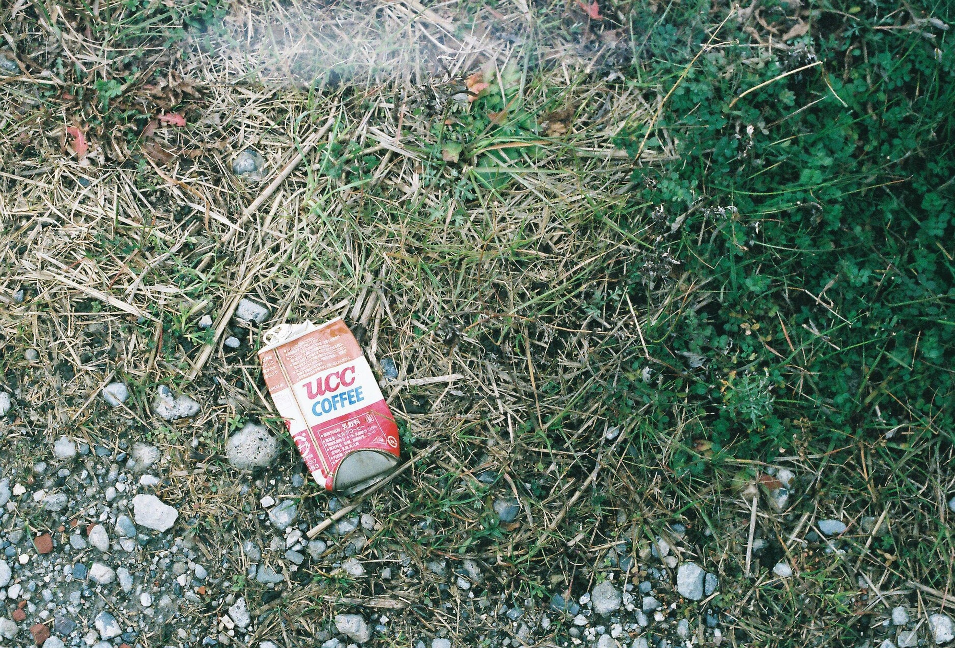 grass, high angle view, field, text, communication, western script, plant, grassy, day, red, growth, ground, abandoned, outdoors, no people, nature, leaf, green color, close-up, warning sign