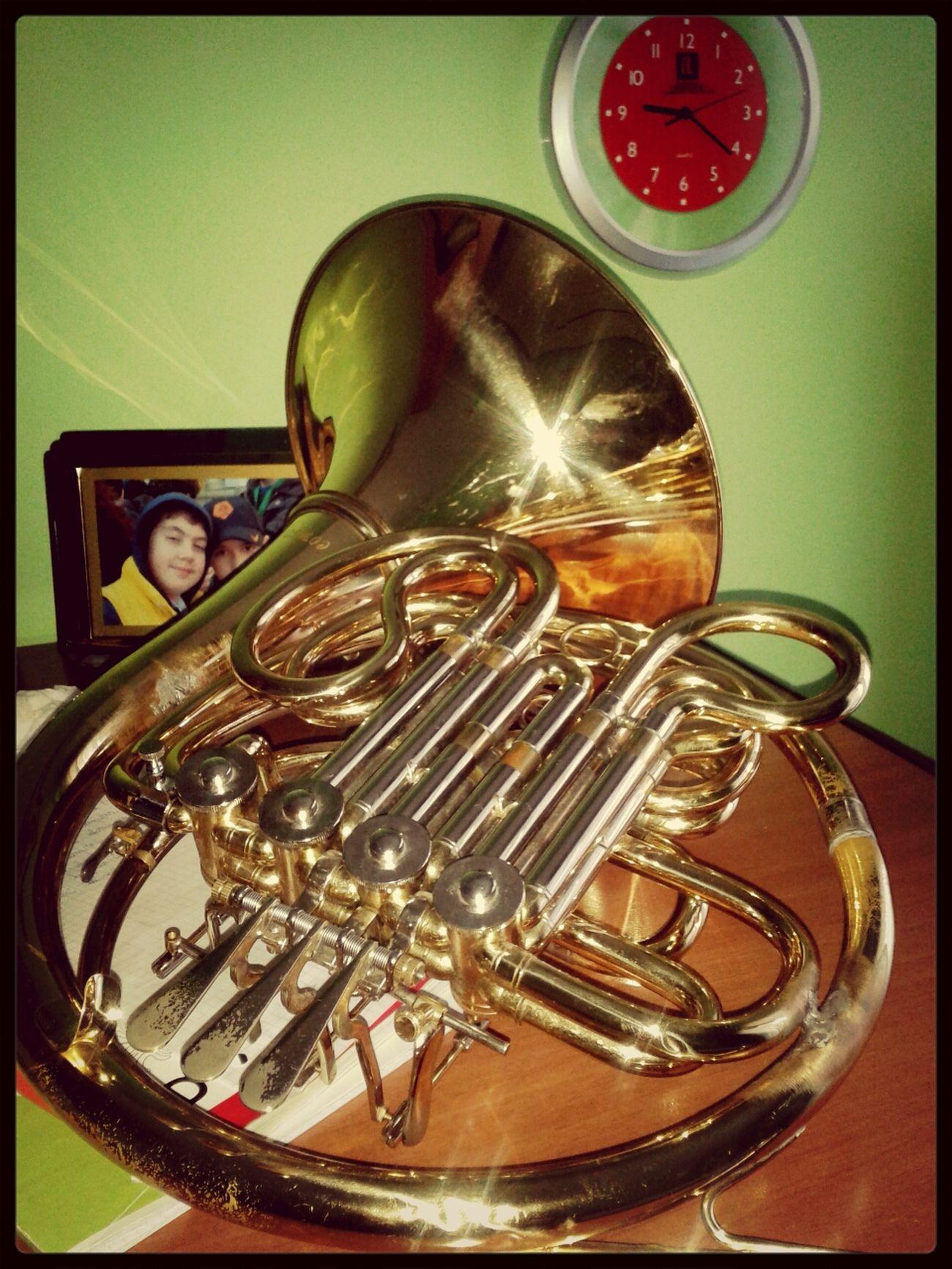 Il mio caro strumento. Il Corno Francese