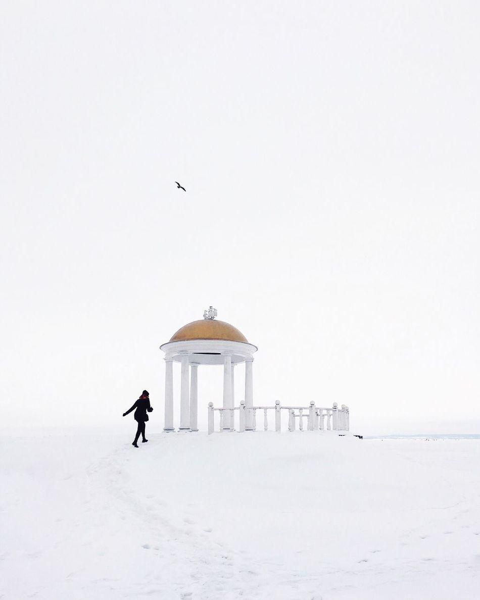 Beautiful stock photos of sky, winter, snow, cold temperature, bird