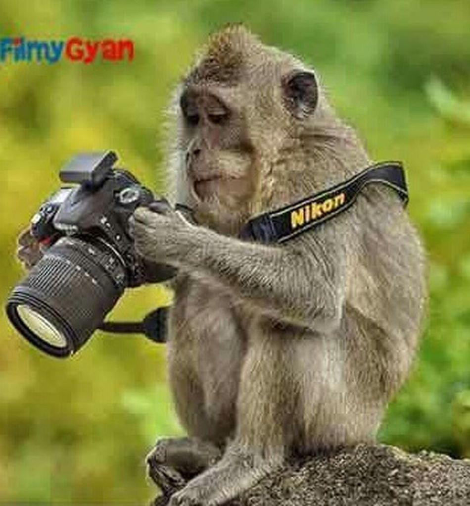 Alas u clckd me. Hello im more than Kejriwal Kejriwalrules Kejriwal2 Kejrival Ok lemme chck whthr im lukn gd or nt. Thn only im gonna certify u.