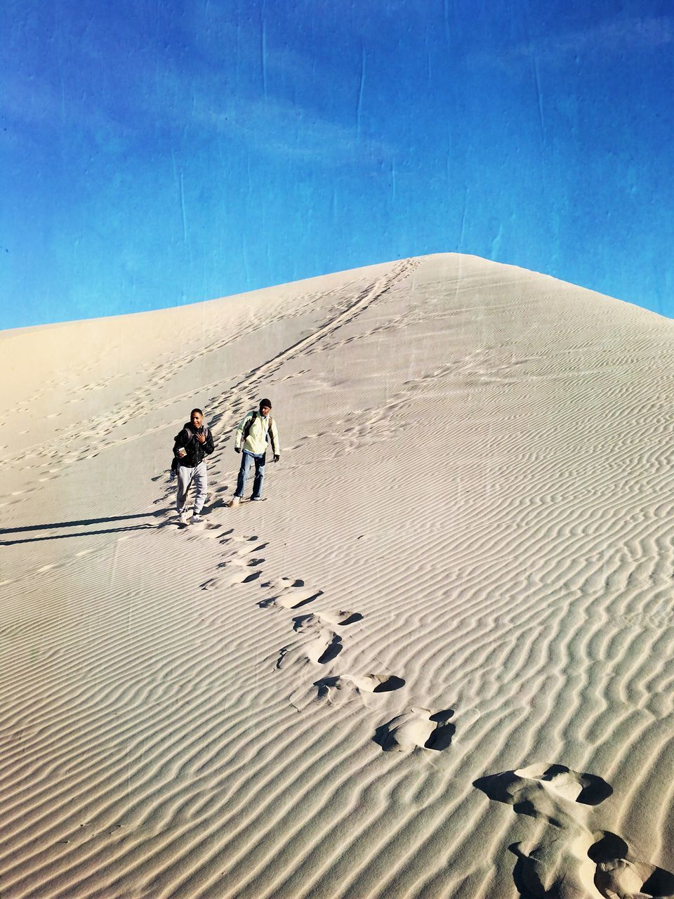 sand, desert, walking, footprint, sand dune, outdoors, arid climate, day, togetherness, real people, sky, two people, nature, mammal, domestic animals, full length, men, people