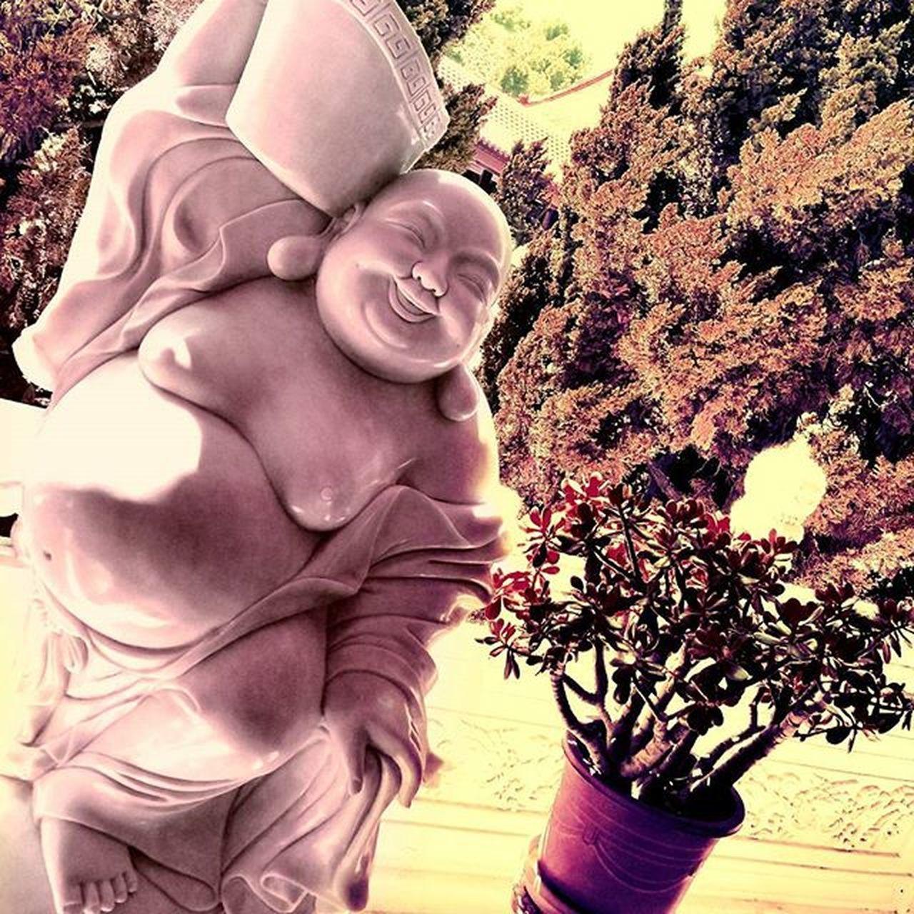 Hsilaitemple Buddha Blackforesttea Buddhisttemple Statue Happy Lifepartner