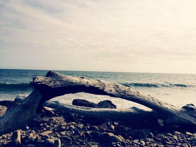 Sunshine Surfing Enjoying The Sun Being A Beach Bum Beach Ventura Ca