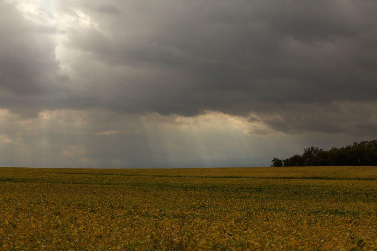 Cloud Cloudscape Cloudy Dramatic Sky Field Landscape Sky Storm Storm Cloud Sunlight