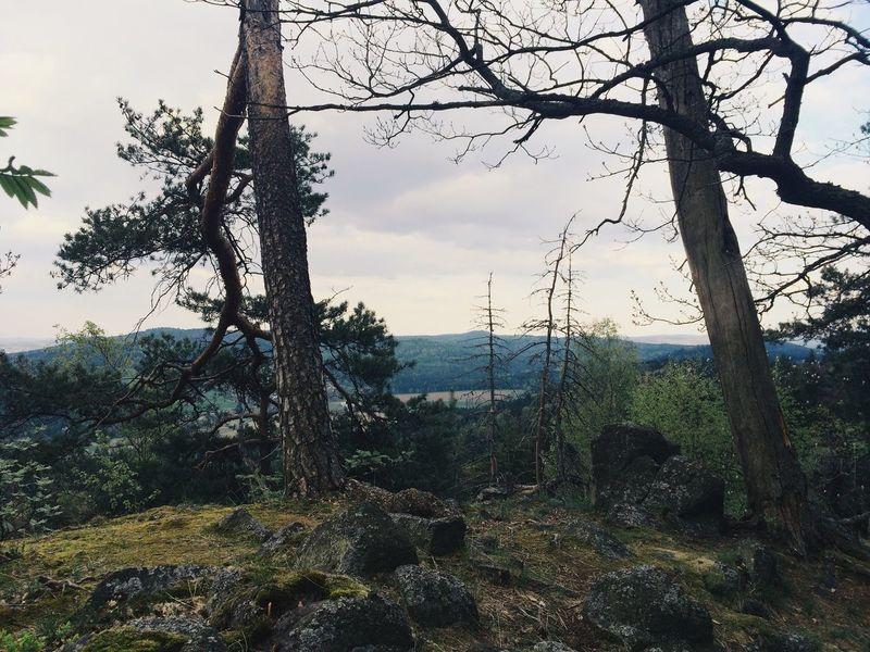 Vscocam Hike