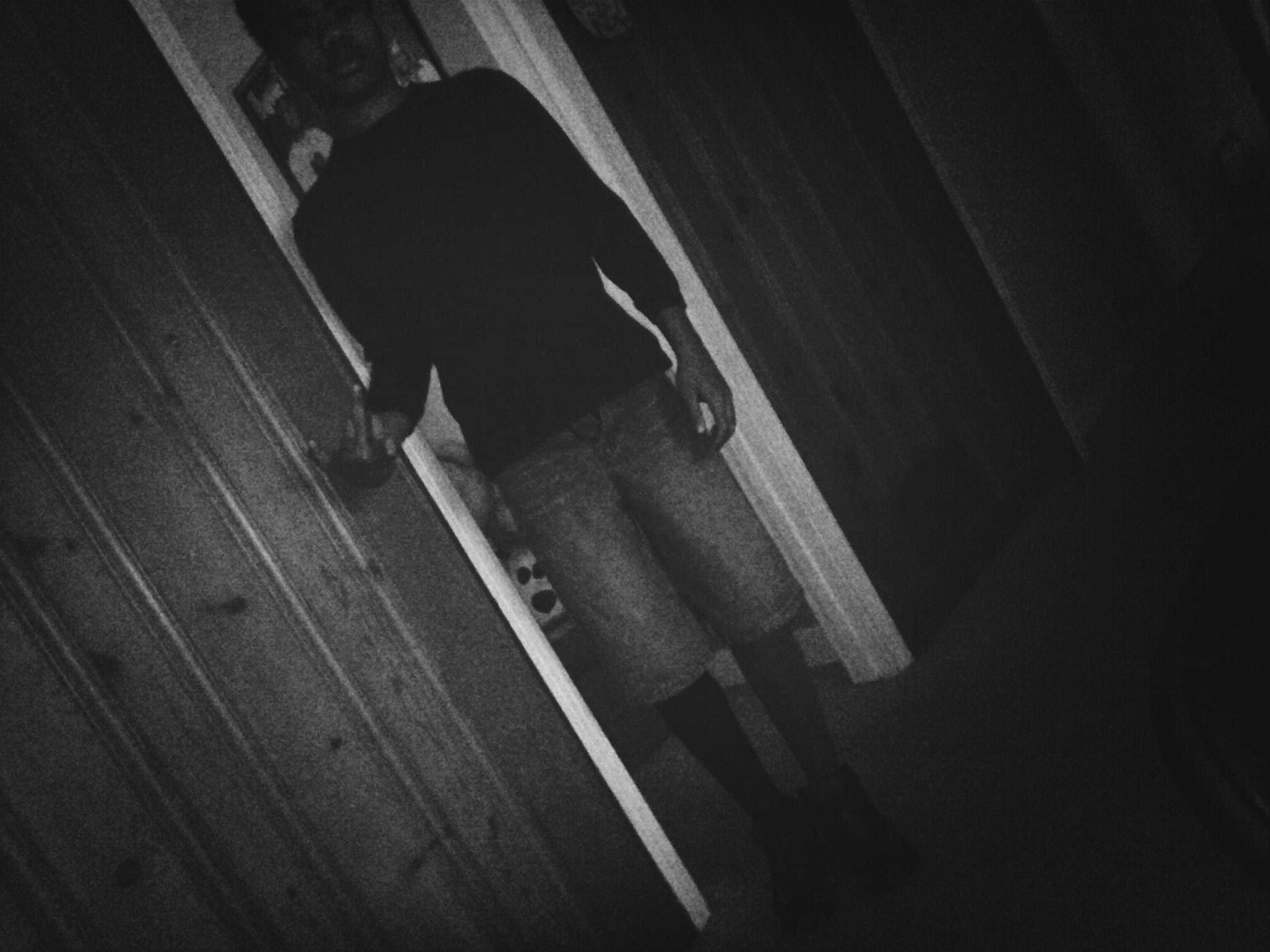 indoors, high angle view, wood - material, shadow, night, sunlight, wooden, animal themes, flooring, door, dark, wall - building feature, wood, full length, one animal, hardwood floor
