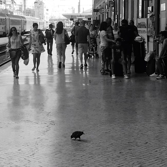 Estação De Santa Apolónia Train Station In Black And White Capturing Movement Portuguese Architecture Urban Geometry Calçada Portuguesa Urban Photography Streetphotography Arquitecture Old Town Urbanholidays Capital City Lisbonlovers Urbanphotography Blackandwhite Photography Black & White Old Buildings Not Forgotten Get To Know Your Country Travel Like A Tourist Shadows And Silhouettes