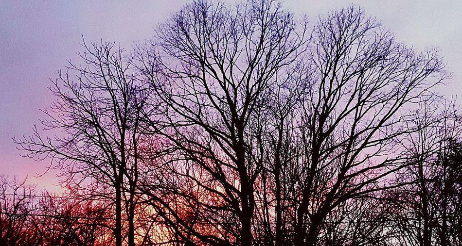 Sunset Toms River NJ Longer Days