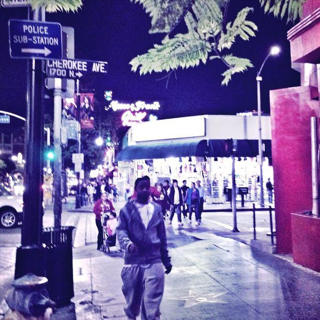 Hollywood Nights