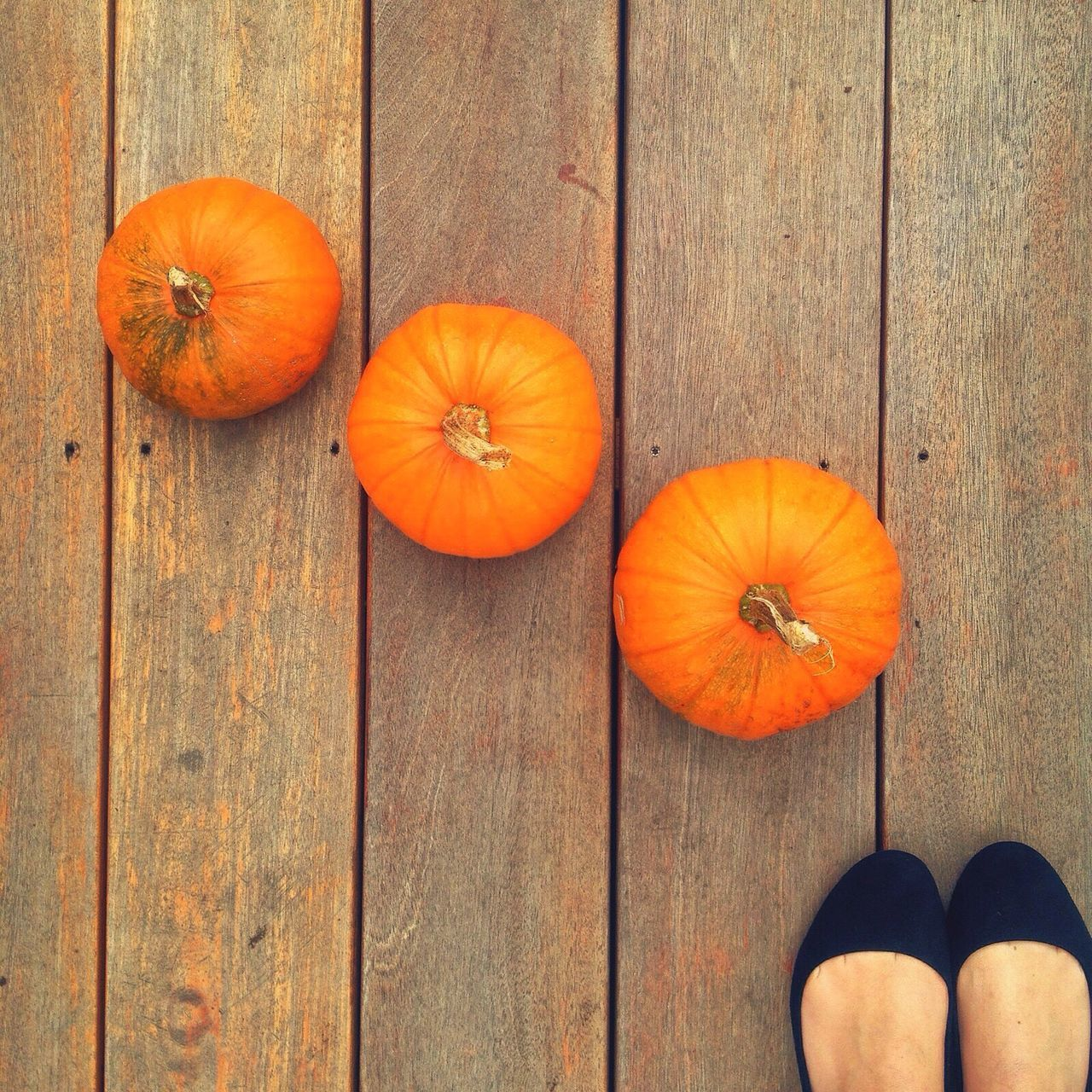Beautiful stock photos of halloween,  Day,  Food,  Food And Drink,  Freshness