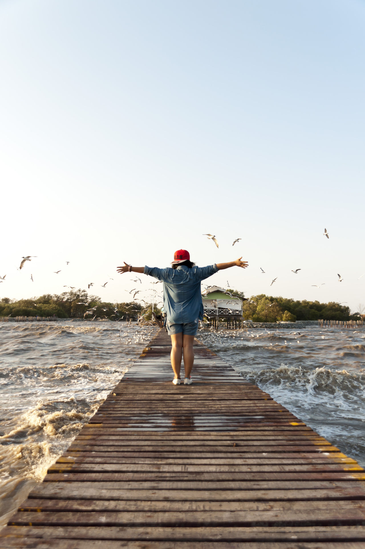 Beautiful stock photos of vacation,  30-34 Years,  Animal Wildlife,  Animals In The Wild,  Arms Outstretched