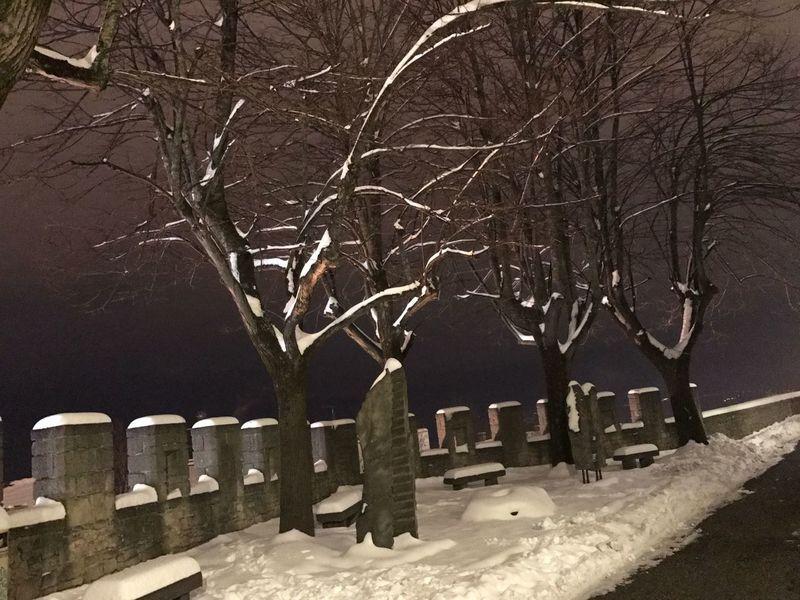winter EyeEmNewHere winter Beauty In Nature Night Photography Night Life Night View Nigth 🌜⭐️ First Eyeem Photo snow