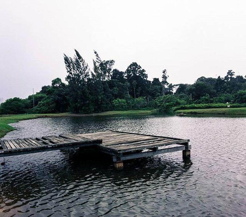 Lake Uitm Perak Seri Iskandar. Photography Photo Nature Igers Igersganu Igersmalaysia Ikutcarakita IGDaily