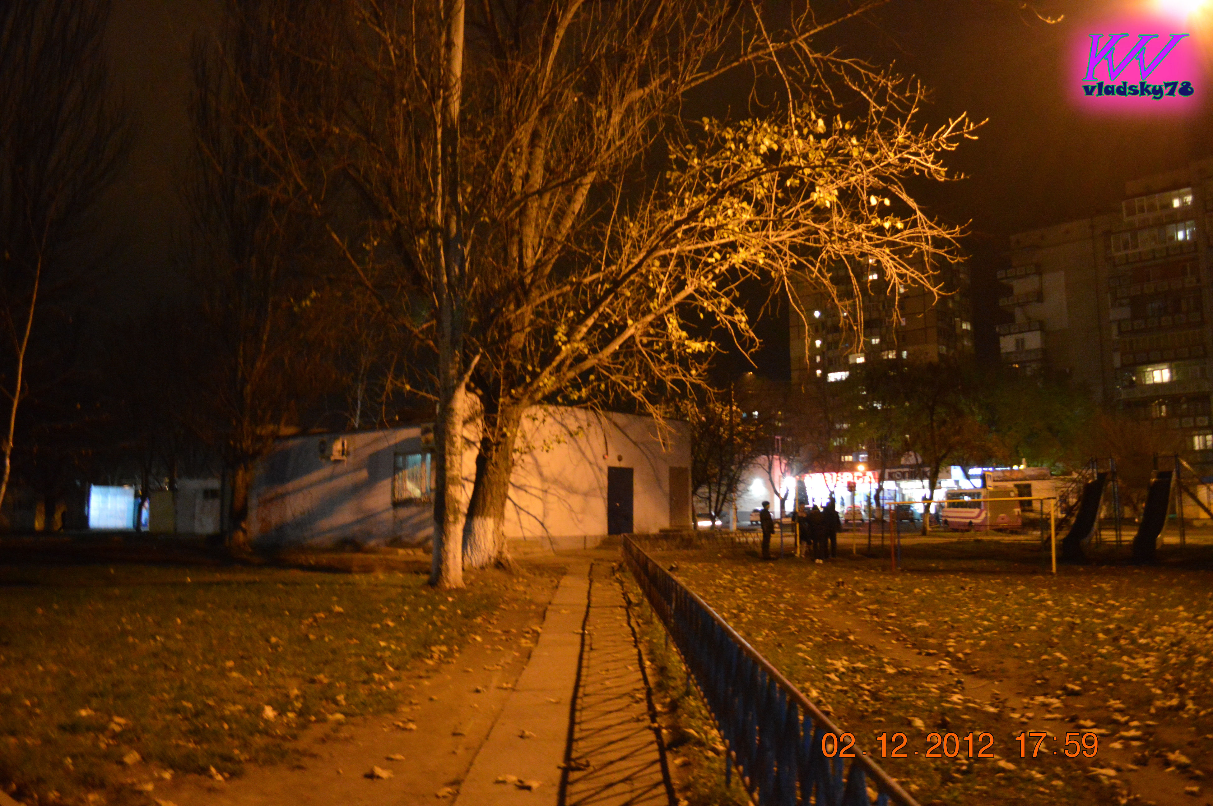 night, illuminated, tree, outdoors, city, no people