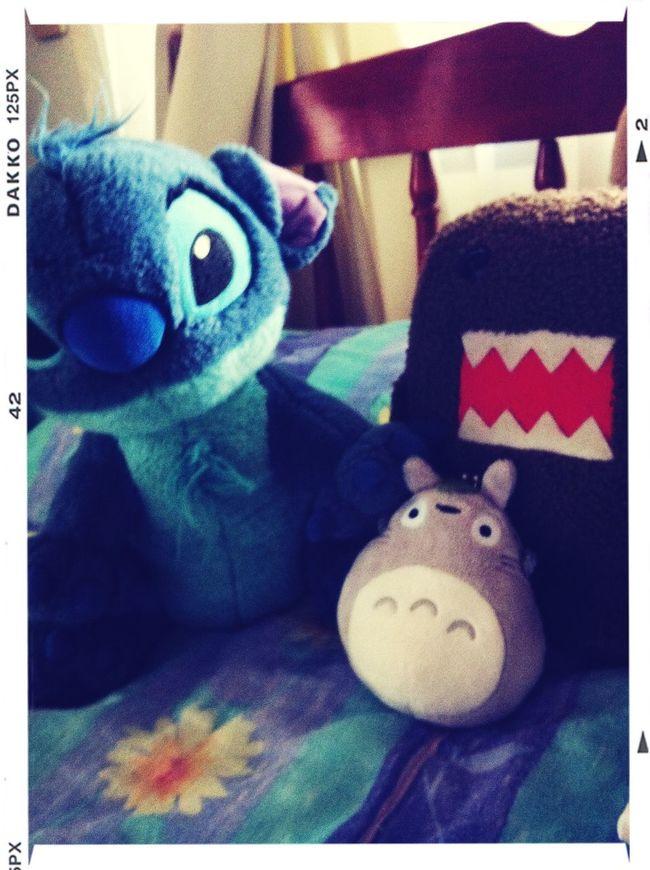 Stitch  Totoro & Domo