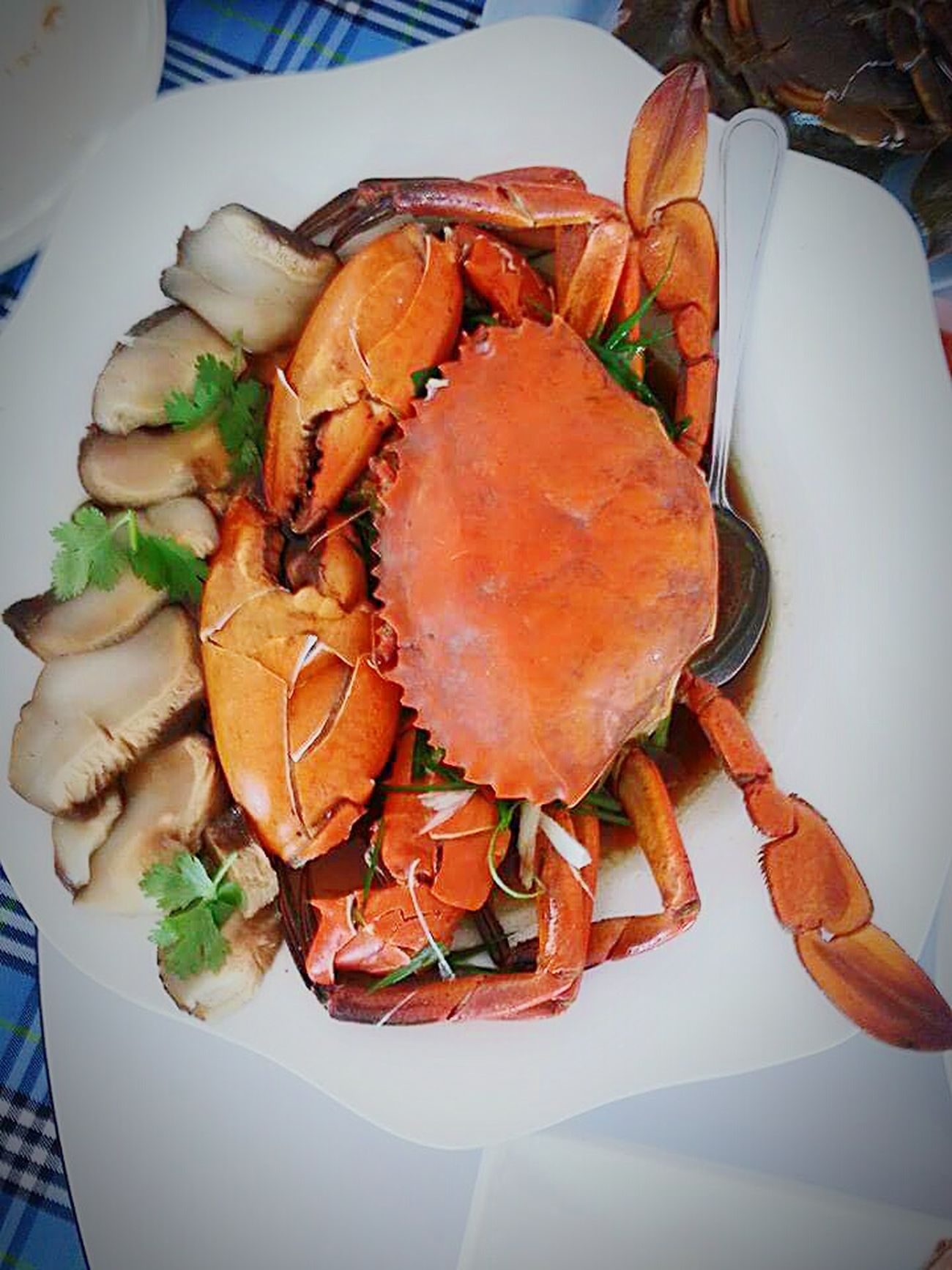 Lovelovelove Awesome! Crab Taking Photos Wonderful Colorful Enjoying Life Eating!  Seafood