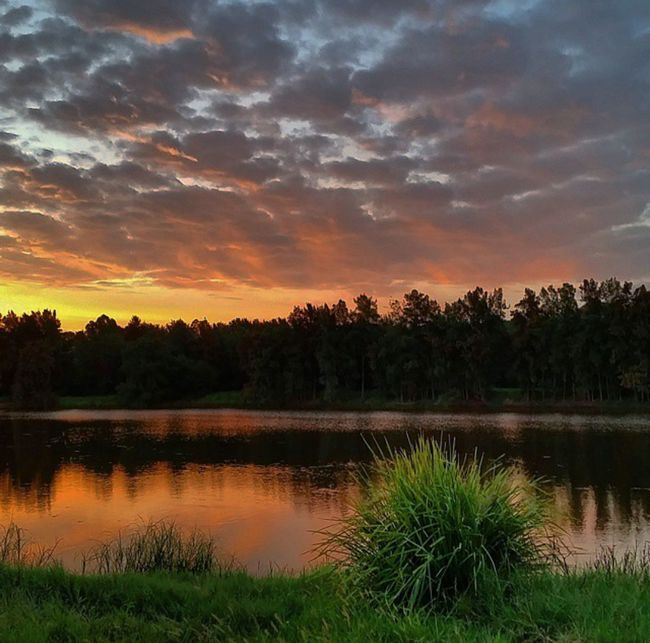 Sunset. Yarramundi, NSW 🌅 Skyddiction @Australia First Eyeem Photo WORLD_BESTSKY Sky_brilliance Best_skyshots Trb_sunsetsfx Loves_australia Amazing_australia