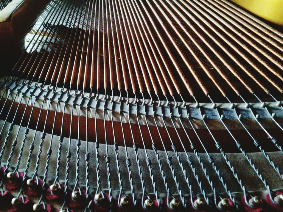 Piano Keys Piano Parts INDONESIA Piano Strings Piano Music Piano Lover Piano Piano Time Piano🎶 Pianoforte Inside Piano Piano Insides Jakarta Indonesia Piano Practice Pianist Piano Key Pianoporn