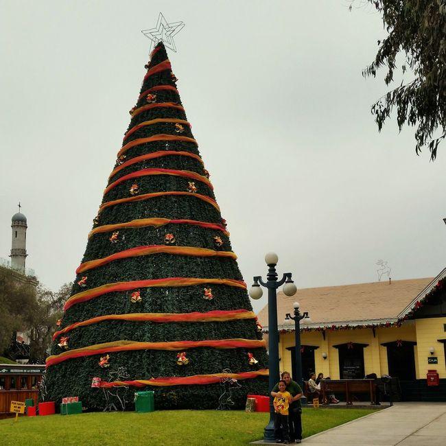 Christmas Tree ParqueDeLaAmistad Peru