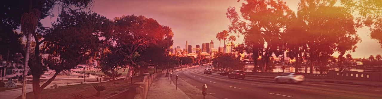 Reel L.A. MacArthur Park Landscape_photography Urban Exploration American Beauty EyeEm Best Shots Feel The Journey