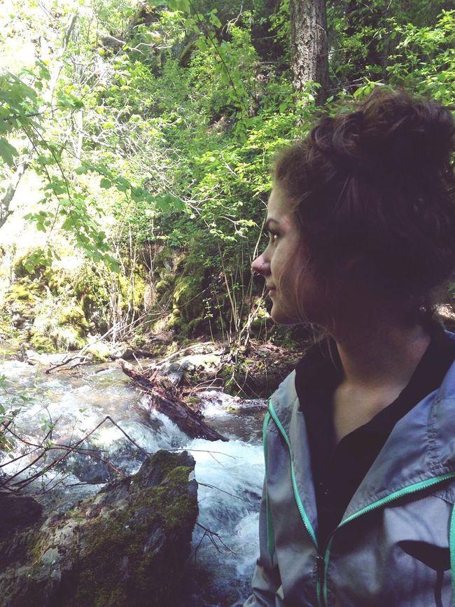 Oregon Wilderness Escape Woods Forest Deepbreathing